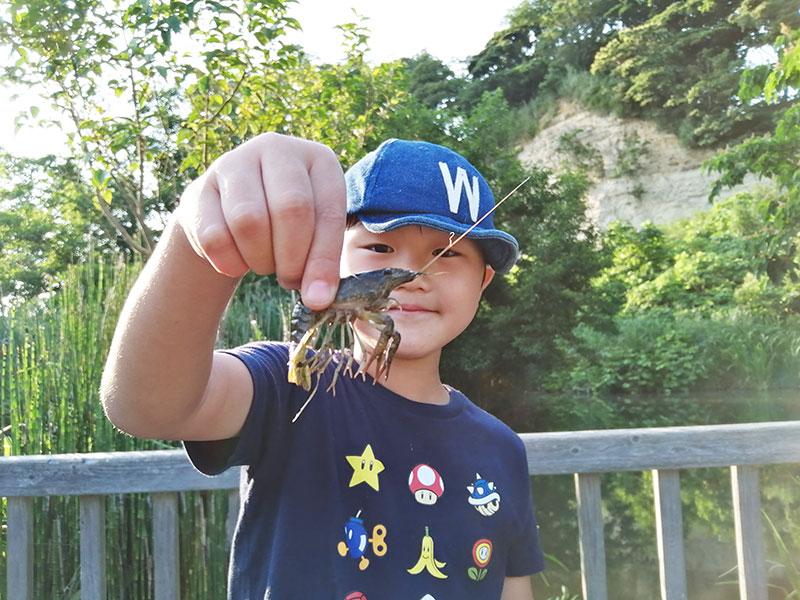 横浜でザリガニ釣りができる場所は?
