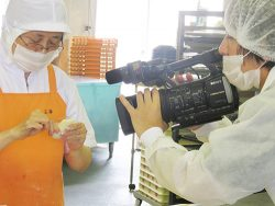 TBSあさチャンで紹介(特集)されたました!横浜の点心工場・正華工場直売