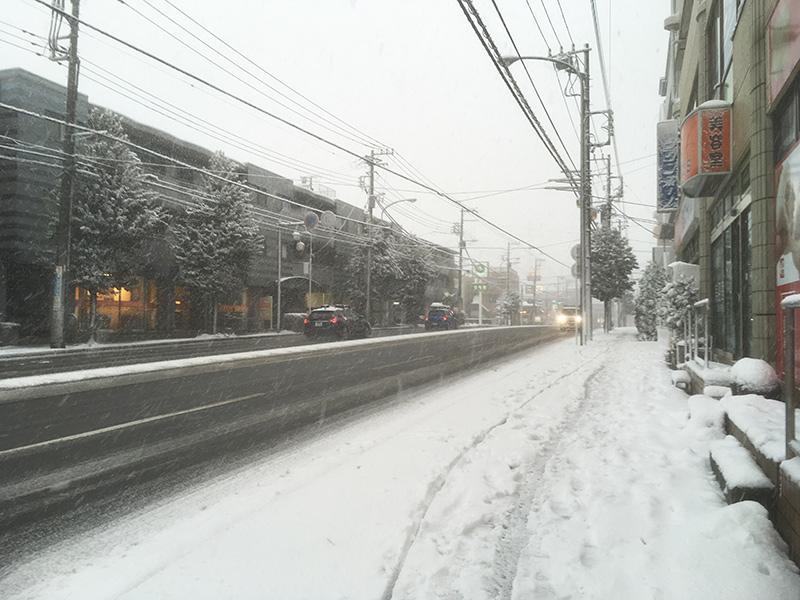 横浜大雪 工場直売好泉店 雪