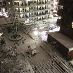 横浜でも大雪 営業時間を短縮させて頂きました