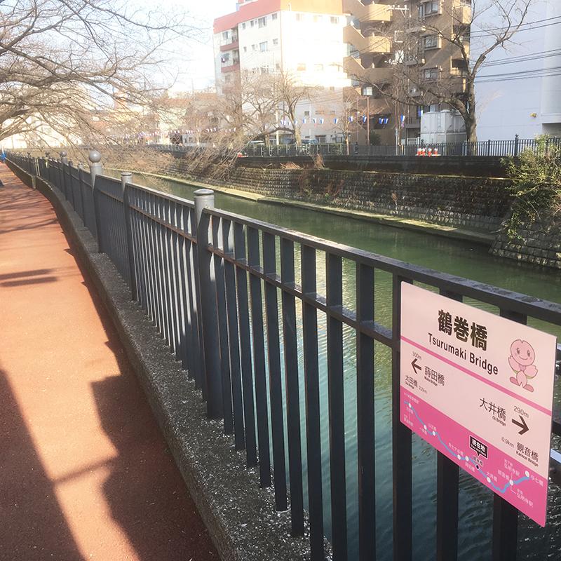 大岡川 鶴巻橋 桜祭り