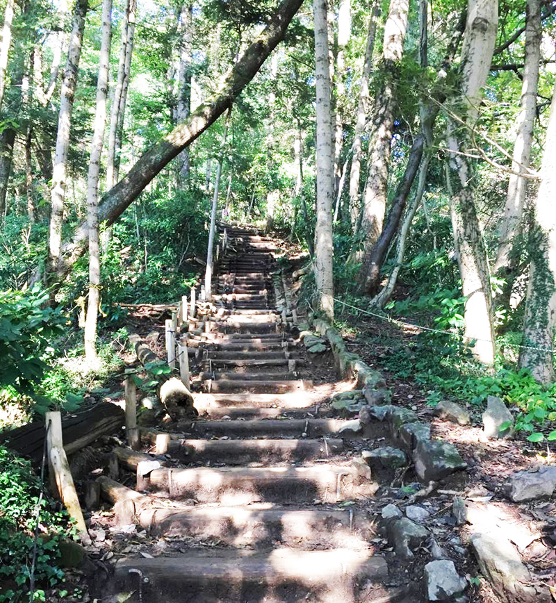 高尾山 最後の階段2