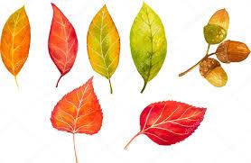 もう秋か・・・