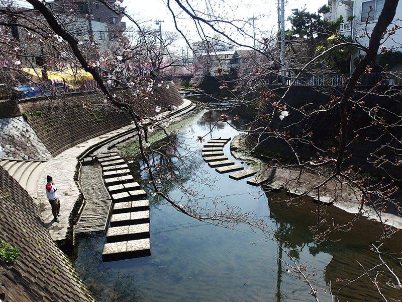大岡川 降りれる箇所 桜まつり