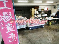 台風 正華工場直売