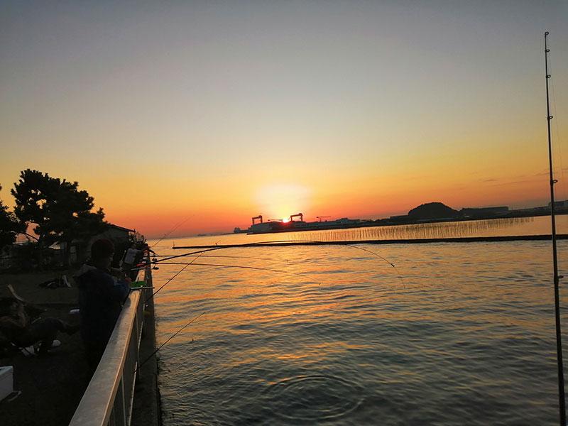 横浜 朝マズメで釣れる場所はどこ?